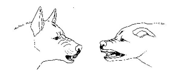 herunterhängende mundwinkel bedeutung